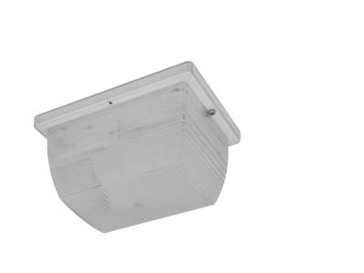 5 x 8 Mini-Canopy (5x8C)