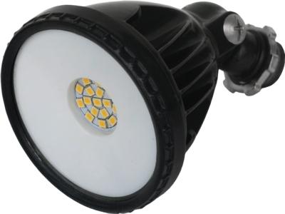 LED Floodlight (FLL12)