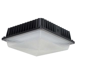 LED Canopy (LCN)