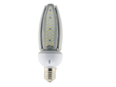 Mogul Base LED Replacement Lamp (LEDMR)